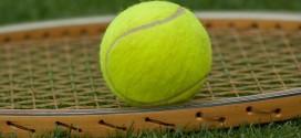 Tenisul românesc în 2019. O viziune